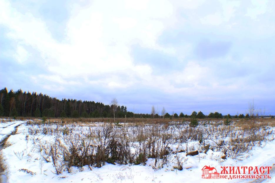 Московская область, Павлово-Посадский, Павловский Посад, деревня Козлово 2
