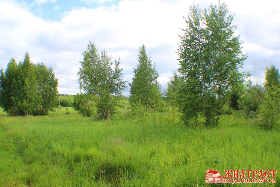 Московская область, Павлово-Посадский, Павловский Посад 5