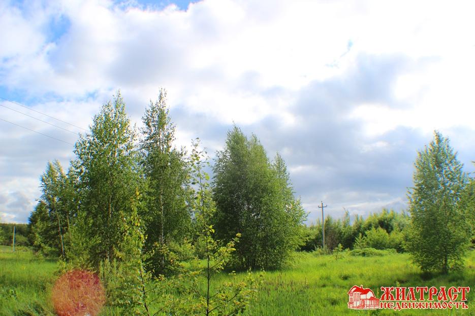 Московская область, Павлово-Посадский, Павловский Посад 8