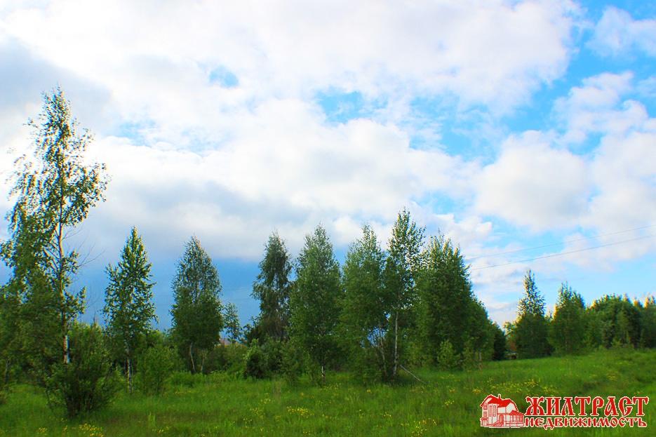 Московская область, Павлово-Посадский, Павловский Посад 3
