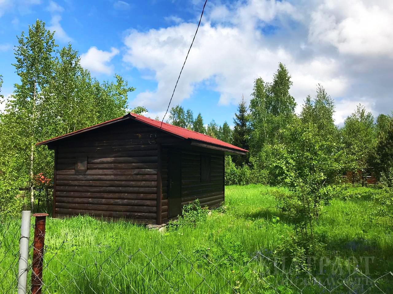 Московская область, Электрогорский, Электрогорск, садовое товарищество Звездочка 4