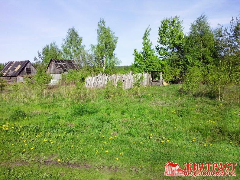 Московская область, Павлово-посадский, Павловский Посад, деревня Алферово 2